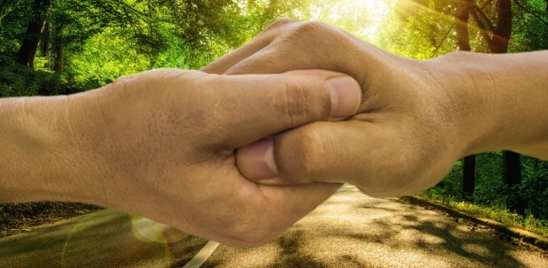 hand in hand future energiewende ecario